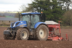 New Holland T7.210 Tractor with a Kuhn HR3004 Power Harrow and Kverneland Accord DA Seed Drill (Shane Casey CK25) Tags: new holland t7210 tractor kuhn hr3004 power harrow kverneland accord da seed drill one pass onepass nh cnh blue casenewholland newholland midleton sow sowing set setting drilling tillage till tilling plant planting crop crops cereal cereals county cork ireland irish farm farmer farming agri agriculture contractor field ground soil dirt earth dust work working horse horsepower hp pull pulling machine machinery grow growing nikon d7200 traktori traktor trekker tracteur trator ciągnik