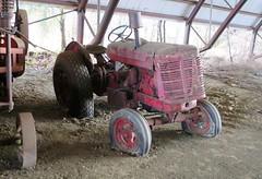 International Super WD6 TA (samestorici) Tags: trattoredepoca oldtimertraktor tractorfarmvintage tracteurantique trattoristorici oldtractor veicolostorico harvester case mccormick ih