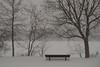 February by the river / Contempler la rivière en février (Jacques Lebleu) Tags: hiver rivière banc parc neige