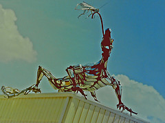 """""""Security Lizard"""" Sculpture on Roof in Downtown St. Petersburg, Florida (gg1electrice60) Tags: dragon rooftop sculpture stpetersburg florida fl pinellascounty unitedstates usa us america downtownstpetersburg downtown stpete saintpetersburg flyontongue fly silver building cityofstpetersburg fleetmanagementbuilding fleetmaintenancebuilding bldg securitylizard 7thavenuen 7thavenorth interstate275 i275 stpetersburgpolice seventhavenorth lizard"""