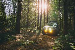 2012 Subaru Forester (donaldgruener) Tags: sh forester subaru forest blm offroad pnw oregon subaruforester