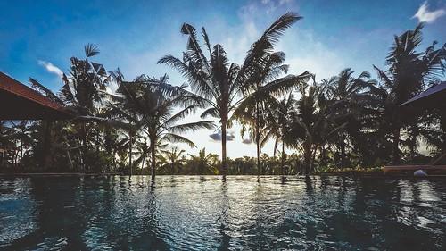 Bali Ubud jungle hotel
