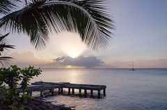 Martinique (Maïa Hesse) Tags: martinique fortdefrance voyage vacances travel holydays beatiful sea sand sun sunlght sunset palmtree palimier mer sable coucherdesoleil bateaux ship