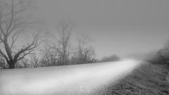 Lo importante ... es el camino (Dancodan) Tags: nikon d7100 nikkor1024mmf3545gdxswmedifasphericalafs paisajes bw bn blancoynegro blackandwhite niebla montañas arboles carretera nubes invierno otoño luz luces camino fb 500px