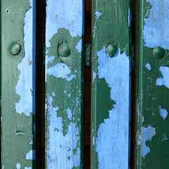 fastened (vertblu) Tags: fastened paint paintedwood painted oldpaint peelingpaint weatheredpaint weathered blue green bluegreen carriagebolts bolts vertical boards planks woodenplanks kwadrat 500x500 bsquare vertblu texture textur lines linien chippedpaint