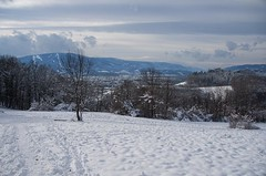Winter panorama (Jumpin'Jack) Tags: winter white stuff snow covered slope ofthe pyramid hill meadow pohorje mountain range inthe background maribor city inbetween trees forest vineyard hills