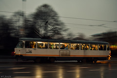 Speeding into the night (WT_fan06) Tags: tatra t4r tram tramvai bucharest bucuresti night dark darkness reflection motion city urban cityscape photography artsy aesthetic january ianuarie 2018 winter romania ratb old movement speed panning fog foggy rainy rain cold orange white fast tramway public transport transportation warm warmth cozy reflections blur nikon d3400 dslr art artistic pan outside outdoors atmosphere 7dwf flickr street yellow 47 3412