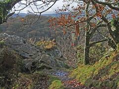 Recording wind chimes on Sharp Tor, Teign Gorge (Philip_Goddard) Tags: europe unitedkingdom britain british britishisles greatbritain uk england southwestengland devon dartmoornationalpark drewsteignton teignvalley teigngorge sharptor recording sonypcmm10 windchimes