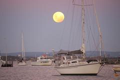 Bunbury Super moon (Les hunting) Tags: super moon red bunbury port evening sky big biggest