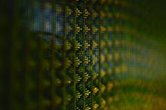 (y.kobayashi) Tags: macro dp3m sigma foveon network net texture abstract