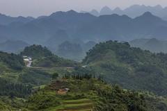 Hory v patrech (zcesty) Tags: vietnam23 terasa krajina hory vietnam dosvěta hàgiang vn