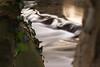 PGH58246 (klangcharakter) Tags: wasser wasserfall bach bachlauf natur efeu baum bäume ufer hofheimlorsbach lorsbacherstrase hessen taunus hofheim lorsbach panasonic mft lumix gh5 voigtländer nokton 425mm f095 langzeitbelichtung nd1000 30sek iso500 f40 soccerpark schwarzbach