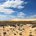 Giant dune.