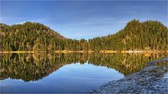 Alatsee (Robbi Metz) Tags: deutschland germany bayern bavaria allgäu alatsee lake landscape forest trees water ice reflection colors canoneos