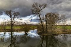 Wolkenstimmung am Rhein (kittimat62) Tags: wolkenstimmung wolken clouds cloud rhein zons hochwasser rhine niederrhein nrw noedrheinwestfalen bäume spiegelungen