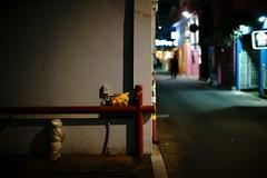 1949/1740 (june1777) Tags: snap street seoul hongdae night light bokeh dof sony a7ii nikon nikkor 50mm f12 ai 5000 clear alley