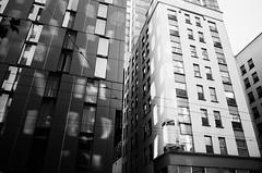 Seattle (Alyson Bowen) Tags: blackandwhite filmisnotdead istillshootfilm citylife seattle reflection architecture 35mm nikonn75 nikon pnw washington streetphotography streetscene