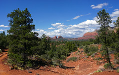 Margs Draw Trail - Sedona, AZ (SomePhotosTakenByMe) Tags: baum tree panorama berge mountains redrock urlaub vacation holiday usa america amerika unitedstates arizona sedona outdoor margsdraw trail hike wanderung nature natur landschaft landscape
