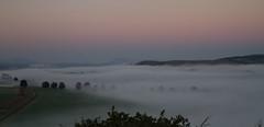 early morning in the KwaZulu-Natal midlands