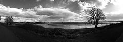 (Wilcasbilcas) Tags: spikeisland widnes cheshire rivermersey merseygatewaybridge