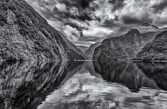 The magnificence of nature (David Feuerhelm) Tags: nikkor blackandwhite bw noiretblanc schwarzundweiss contrast moody atmosphere reflection clouds mirror wideangle doubtfulsound fiordland southland newzealand silverefex nikon d750 2470mmf28 aoi elitegalleryaoi bestcapturesaoi aoi3levels