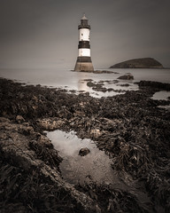 Point (jellyfire) Tags: anglesey distagont3518 le landscape landscapephotography penmon penmonpoint seaweed sonnartfe55mmf18za sony sonya7r sonyfe70200mmf40goss winter ze zeissdistagont18mmf35ze leeacaster lighthouse rockpools snowdonia wales weeds wwwleeacastercom zeiss