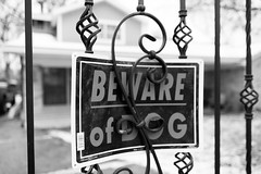 Beware of Dog (SpaceCityExposures) Tags: spacecityexposures a7rii sony texas houston snow dog beware