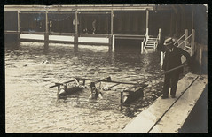 Swimming lesson, Domain Baths, Sydney NSW (NSW State Archives and Records) Tags: archives statearchivesnsw newsouthwales blackandwhite swimming pupils schoolchildren