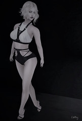 Anne... (zaziaa resident) Tags: eleganceboutique anne panty topharness cosmopolitain pose piclarts