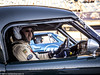 2017 Zandvoort Historic GP: AC Cobra (8w6thgear) Tags: zandvoort historic gp grandprix 2017 ac cobra sportscar startinggrid mastersgentlemendrivers portrait racingdriver michaelgans
