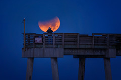 Fisherman on Venice Pier taking a photograph of the Supermoon blue blood moon with partial lunar eclipse, Venice, Florida (diana_robinson) Tags: takingaphoto pier fishingpier venicefishingpier nikonflickraward supermoonbluebloodmoon partiallunareclipse supermoon bluebloodmoon moon raresuperbluebloodmoon rarecelestialevent fisherman takingphotography venicepier venice florida
