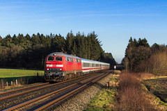 DB 218 341 + 218 369 - bei St. Michaelisdonn (Pau Sommerfeld Acebrón) Tags:
