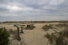 Beach Access along Trail