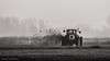 _D514965 (De Hollena) Tags: agriculture gülle landbouw landwirtschaft mest mist tractor traktor trekker