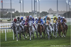 IMG_7019 copy (Services 33159455) Tags: qatar doha horse racing qrec emir horseracing raytohgraphy