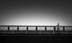 Fog (TS446Photo) Tags: london bridge street fog mist mono black white fineart zeiss