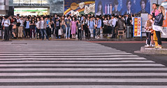 lost (poludziber1) Tags: street streetphotography summer city colorful cityscape color colorfull capital stripes people travel traffic tokyo japan urban