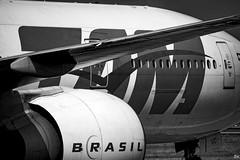 170905-PX-185 - TAM - Brasil (b_kohnert) Tags: blackandwhite aircraft flughafenfrankfurtammaineddf tam