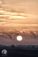 Sunrise (warmianaturalnie) Tags: nature sunset landscape dusk sky cloudsky scenics outdoors ruralscene sun tree field sunrisedawn beautyinnature dawn morning cloudscape summer warmia warmianaturalnie