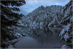 Lac de Lispach - Vosges (jamesreed68) Tags: lispach 88 vosges glace hiver france grandest canon eos 600d lorraine