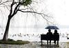 Westlake 西湖 (MelindaChan ^..^) Tags: westlake 西湖 hangzhou china 杭州 people willow tree water lake chanmelmel mel melinda melindachan seat sit chair
