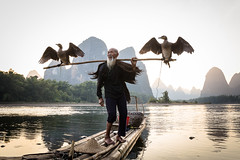 Cormorant Fisherman in Guilin (mlhell) Tags: animals boats china cormorantfishermen guilin karstmountains landscape lijangriver mountains nature portrait river rural xingping