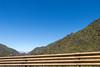 IMG_5933 (jaglazier) Tags: 121417 2017 andes copyright2017jamesaglazier december deciduoustrees ecuador pichincha quito trees cloudforest forests landscapes mountains distritometropolitanodequito