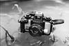 Image 30 (derqueue) Tags: spotmaticf smctakumar5014 hp5 homedevelopment nikonos