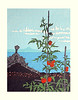 Tomato (Japanese Flower and Bird Art) Tags: flower tomato solanum lycopersicum solanaceae mitsuhiro unno modern woodblock print japan japanese art readercollection