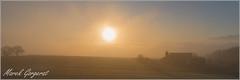 Orange (reko22) Tags: brouillard soleil orange paysages campagne