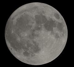 Moon (angelalonso4) Tags: luna moon canon tamron blancoynegro blak white 月 луна bw naturalmente nature telescope astronomy 2016 eos himmel stone piedra blackandwhite ef noiretblanc