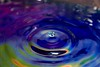 IMG_2585 (kontorousisjohn) Tags: waterdropphotography macrophotography
