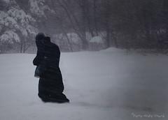 Le poids de l'hiver ... ( P-A) Tags: hiver froid tempête blanc long fatigue urbain photos simpa© banlieue sentiers rurale campagne ithinkthisisart