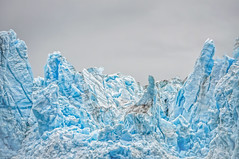 baby it's cold outside (Pejasar) Tags: glacier glacierbay alaska ice inlandcruise blue shiver splinter cracked fortressofice
